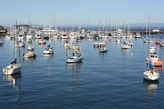 Fishermen's Wharf (davidjamesbindon) Tags: monterey california usa united states america fishermens wharf harbour bay marina waterfront boats yachts