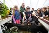 Sustainability_STORC_EPIC_20180417_0266 (Sacramento State) Tags: universitycommunications sacramentostate californiastateuniversitysacramento sacstate sustainability storc campus tour garden flower aquaponics greenhouse kids