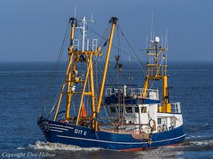 DIT 6 (U. Heinze) Tags: cuxhaven ship schiff nordsee vessel olympus boot boat kutter elbe