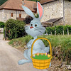easter bunny land escape (knfgame2015) Tags: free knfgame newescapegame game knf games escapegame newgames androidgames mobilegames roomescape escapegames puzzlegames puzzle escapegameandroid hiddenescapegames