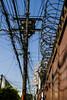 México, ville câblée 2/4 (dominiquita52) Tags: méxico cables électricity