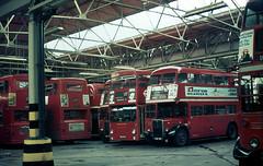 glc - inside lte abbey wood garage 3-75 (johnmightycat1) Tags: bus london rt aec