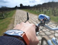 Roadtrip Bordeaux - Sources de Caudalie, Hotel 5 étoiles SPA Travel zen (dsgforever) Tags: bordeaux infiniti q60 travel cars voyage source caudalie vigne wine vin