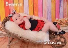 154/365 (Mááh :)) Tags: 365days 365dias 365 ensaio 5meses baby babygirl bebê joaninha ladybug