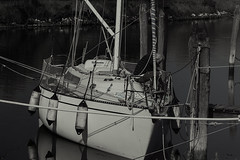 DSC01505_1_bn_02 (gaetanovalentini) Tags: sony a7 laguna venice jesolo italy water boat old man photography people veneto bw passione nature