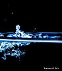 1 (spiderciccio78) Tags: goccedacqua gocce drops dropphotography nikon d7000 35mm 35mm18g 18105mm flash lamp dark nikonitalia nikontop photo photography fotografoitaliano brindisi picoftheday picofday pic pics
