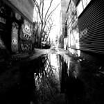 Back Alley Reflections 1 thumbnail