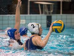 44050552 (roel.ubels) Tags: enc arnhem waterpolo hbw sport topsport 2018 2e klasse