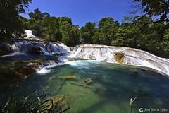20180328 México (100) R01 (Nikobo3) Tags: centroamérica méxico chiapas cataratas cataratasdeaguaazul agua azul blue travel viajes paisajes nikon nikond610 d610 nikon142428 nikobo joségarcíacobo naturaleza
