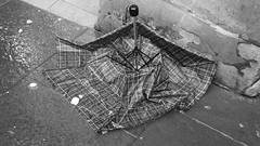 fallen in the line of duty (byronv2) Tags: edinburgh scotland edimbourg parapluie umbrella brolly tartan broken abandoned discarded pavement blackandwhite blackwhite bw monochrome rain snow slush weather