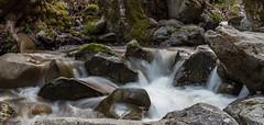 Nacimiento River (Arup De) Tags: outdoor camping california bigsur
