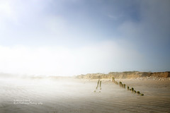 Managed erosion 4 (rhfo2o - rick hathaway photography) Tags: rhfo2o canon canoneos7d atheringtonbeach elmer elmersands bognorregis westsussex beach sand seaside groyne erosion sky mist fog