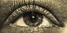 (hammer.adrienn) Tags: macro sepia eye
