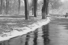 49 shades of grey (fdlscrmn) Tags: bw 7dwf snowstorm snow lizphotobusy cof cof018 reflections scene cof018dmnq cof018cg cofo18dero cof018mark cof018stef bwartaward