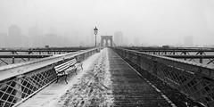 Brooklyn Bridge (dansshots) Tags: bnw blackandwhite blackandwhitephotography blackandwhitephoto blackandwhitenewyorkcity bronxzoo brooklynbridge brooklyn bridge snow snowinnewyork snowinnyc noreaster snowstorm dansshots nikon nikond750 picoftheday photooftheday