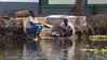 Cleaning pans in the Kerala Backwaters (amanda & allan) Tags: india alleppey kerala riceboat riceboats palmtrees palms backwaters veniceoftheeast