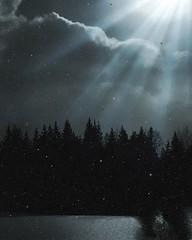 Riddarhyttan, Sweden (Tankartartid) Tags: woods forest skog picsart moon måne snö träd trees snow svartvit bnw blackandwhite svartvitt himmel sky moln clouds nattbild natt nightsshot night vinter winter norden nordic västmanland riddarhyttan europe sverige sweden instagram ifttt