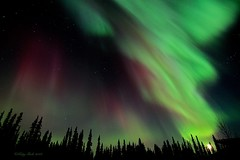 Soaring (Katy on the Tundra) Tags: northernlights auroraborealis nightsky