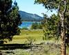 Quiet Meadow, Big Bear Lake, CA 2017 (inkknife_2000 (9 million views)) Tags: bigbearlake bigbearca mountains lakes mountainlake skyandclouds usa landscape dgrahamphoto peaceandquiet meadow