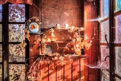 [URBEX] Forest Haven (Olivier InSpace) Tags: urbex urban urbanexploration exploration explorer urbanexplorer abandoned abandonedplace abandonedplaces lost decay dirt photographie photography canon 7d canon7d teamlili doraurbex memories window glass pièce bâtiment plafond mur architecture chalet wood forest foret nature wild hunt chasseur gibier