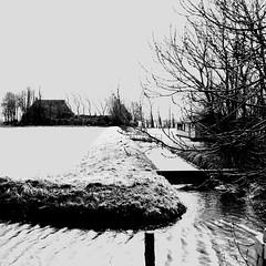 Water movements (CloudBuster) Tags: meadow weilanden groen green countryside platteland friesland water open view uitzicht farms boederijen shadows schaduwen black white zwart wit