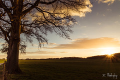 Coucher de soleil sur Oppagne (melographye) Tags: sunset sunsetcolors sunsetlovers coucherdesoleil amoureuxdecoucherdesoleil landscape paysage