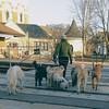 the morning dog walk (ihynz7) Tags: dogwalker dogwalking dogs explored riverside illinois