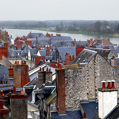 Blois, France (pom'.) Tags: panasonicdmctz101 march 2018 100 200 roofs 300 europeanunion france blois loiretcher 41 centrevaldeloire loire 5000 400