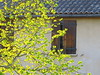 Feuilles lumineuses (LILI 296...) Tags: canonpowershotg7x printemps maison tuiles lumière volet luminosité feuilles arbre