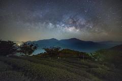 武界~茶園銀河~  Milkyway above Tea farm (Shang-fu Dai) Tags: 台灣 taiwan 南投 武界 nikon d800e sky landscape formosa nantou galaxy 銀河 星空 milkyway 戶外