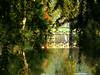 Canal (Raymonde Contensous) Tags: canal eau reflets marais essonne domainedechamarande nature paysage