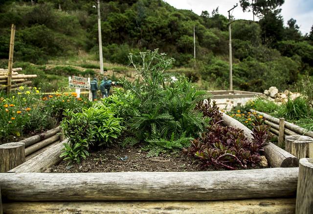 Jardines Nodo Cerros Orientales