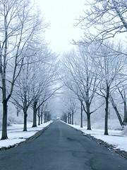 Winter Road (Stanley Zimny (Thank You for 30 Million views)) Tags: winter snow seasons tree skylands nj road street vanish