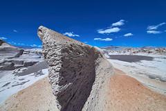 contra viento y marea (Luis_Garriga) Tags: pómez campodepiedrapómez puna desierto erosión catamarca argentina tokina1116 ilce6000 kfconcept