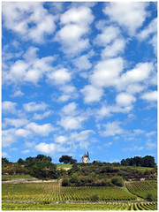 Santenay (abac077) Tags: paysage campagne vigne vineyard ciel sky moulin mill france bourgogne burgundy nuages clouds frace