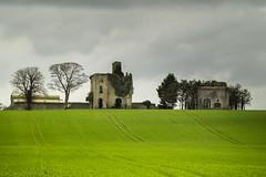 Rathcoffey Castle (burgootim) Tags: ireland kildare castle norman sonyapril spring
