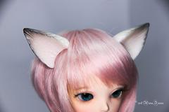 Commissioned Wolf ears YOSD (AnnaZu) Tags: etsy commission vesnushkahandmade littlefee chole doll fairyland magnetic ears wolf white annaku annazu bjd abjd balljointed polymer clay