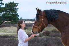 myweekofsideportraits (Evelien R.) Tags: horse shire equestrian friends friendship