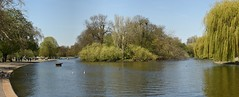 Boating Lake, Regent's Park, London (rq uk) Tags: rquk nikon d750 london regentspark afsnikkor70200mmf28efledvr boatinglake walkpaddingtontocamdenlockandbackthroughregentspark