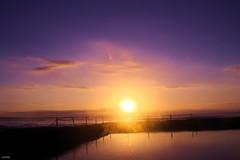 Sun Flare (Danielle Bea Photography) Tags: sunrise sun flare sky photography canon australia sydney landscape nature water bridge reflection colour cronulla beach rockpool clouds