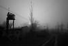 (Walter Daniel Fuhrmann) Tags: rural dark bw blancoynegro blackandwhite niebla fog campo camino path