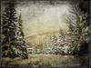 DE LA NEIGE,DE LA NEIGE, DE LA NEIGE. (pierre.arnoldi) Tags: montsainthilaire québec canada pierrearnoldi photoderue photooriginale photocouleur photographequébécois phototexturée phototéléphone neige hiver montagne on1photoraw2018 iphone6s