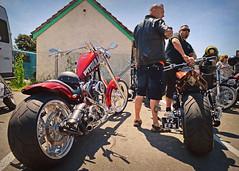 Pitbull and the Rod.. (Harleynik Rides Again.) Tags: chopper ncc 33 pitbull vrod bikers motorcycles harleynikridesagain