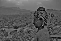 """INDONESIEN,Java, Borobudur - buddhistische Tempelanlage, Buddha, 17252/9769 (roba66) Tags: skulptur sculpture buddha reisen travel explorevoyages urlaub visit roba66 asien südostasien asia eartasia """"southeastasia"""" indonesien indonesia """"republikindonesien"""" """"republicofindonesia"""" indonesiearchipelago inselstaat java borobodur barabudur tempelanlage tempel temple yogyakarta """"mahayanabuddhismus"""" """"buddhisttemple"""" relief statue bauwerk building architektur architecture arquitetura kulturdenkmal monument fassade façade platz places historie history historic historical geschichte blackwhite bw sw branco negro blackandwhite blancoenero blancoynegro monochrome byn bretoebranco einfarbig schwarzweis"""