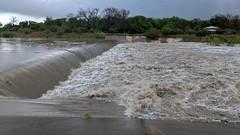 28Mar18 SA River Rise (107) (WanderNeal) Tags: san antonio river sanantonioriver flotsam plastic flow