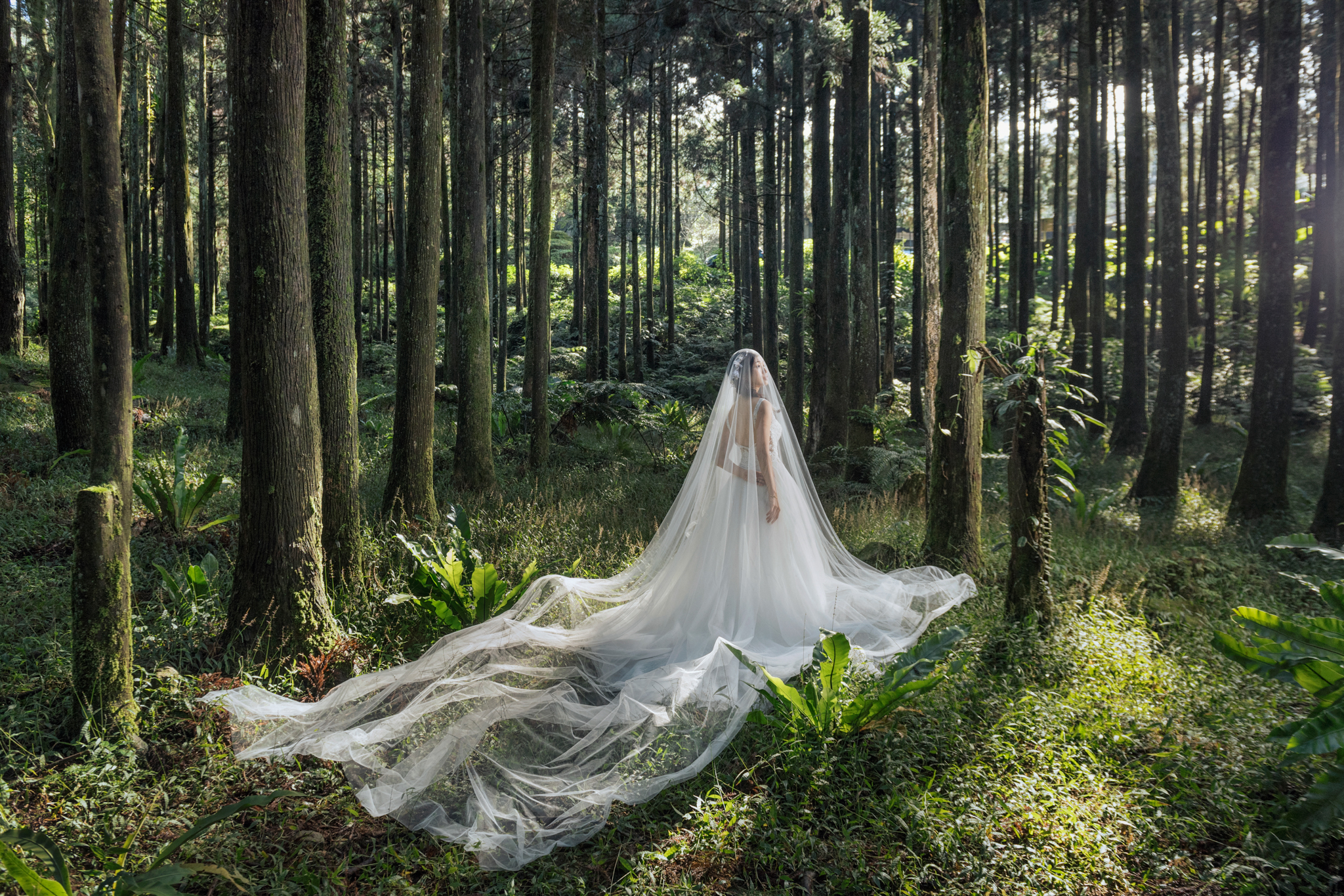 Donfer Photography, EASTERN WEDDING, 自主婚紗, 自助婚紗, 婚紗影像, 熊空茶園, 藝術婚紗, 東法