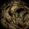 coiled (Marked_man) Tags: art texture creation scales coils serpentine burnished brass bronze abstract