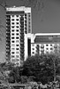 Jumeirah Carlton Tower / SW1 (Images George Rex) Tags: london rbkc uk hotel bw blackandwhite cadoganplace cadogangardens architecture modernism highrise sw1 hanstownconservationarea michaelrosenauer england photobygeorgerex unitedkingdom britain imagesgeorgerex jumeirahcarltontower knightsbridge