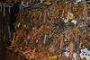 DSC_0241 (Tedder13) Tags: matlock derbyshire mills bobbins looms cromford mill masson
