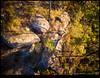 180204-0092-MAVICP.JPG (hopeless128) Tags: australia trees sydney rock 2018 bluemountains glenbrook newsouthwales au